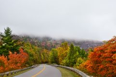 弯曲道路通过阿巴拉契亚山脉的有雾的秋天森林 库存图片