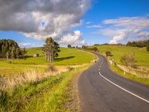 弯曲道路通过绿色多小山风景在北国,新的玉蜀黍属 库存图片