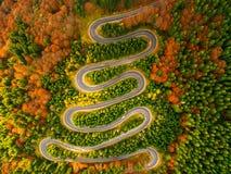 弯曲道路鸟瞰图通过秋天上色了森林 图库摄影