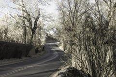 弯曲道路 免版税库存图片