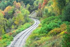 弯曲铁路轨道在森林里 图库摄影