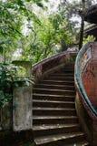 弯曲年迈的大厦楼梯在树树荫下在晴天 库存照片