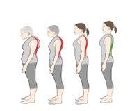 弯身的姿态的发展与年龄的,显示 向量例证
