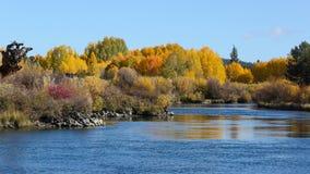弯,俄勒冈的秋天颜色 库存图片