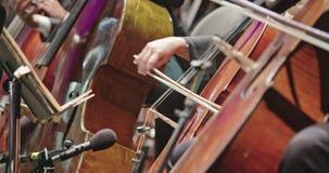 弹大提琴的音乐家在古典音乐排练期间在音乐会前 影视素材