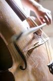 弹大提琴细节  免版税库存照片