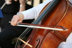 弹大提琴 免版税库存照片