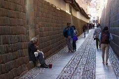 弹奏一个乐器的当地秘鲁人 库存照片