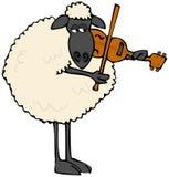 弹小提琴的黑面的绵羊 免版税库存图片