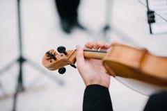 弹有弓关闭的音乐家小提琴 免版税库存照片