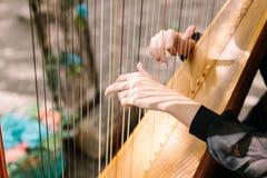 弹竖琴的妇女的手 交响乐团的乐队 竖琴家 图库摄影