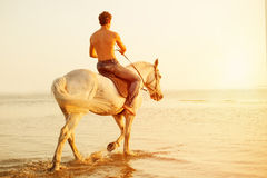强壮男子的人和马在天空和水背景  男孩方式 库存图片