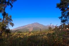 强大山在东爪哇 免版税库存照片