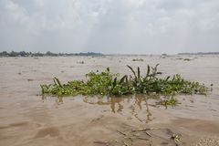 强大湄公河 免版税库存图片