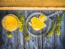 强奸与新鲜的开花的植物和蜂窝的蜂蜜在蓝色土气木背景 免版税库存照片