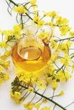 强奸开花和油菜油在水罐 免版税库存图片