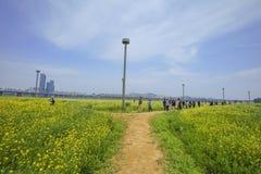 强奸花汉城,韩国 图库摄影
