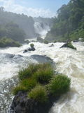 强有力的伊瓜苏瀑布 免版税库存图片