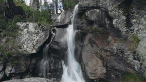 强有力的山小瀑布瀑布在森林里 股票录像