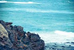 强有力的海洋 免版税库存图片