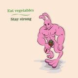 强有力的爱好健美者兔子 库存图片