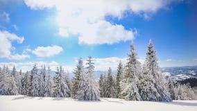 强的冬天太阳 股票视频