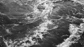 强的风暴培养从黑海底部的沙子  免版税库存图片