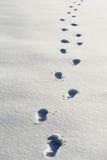 强调的概念唤起探险脚印路径雪某处对未知 免版税库存图片