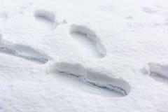 强调的概念唤起探险脚印路径雪某处对未知 免版税图库摄影