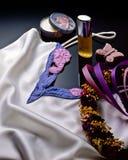 强调美丽的衣物柔滑的软件 免版税图库摄影