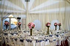 强调色接收样式紫罗兰色婚礼 库存照片