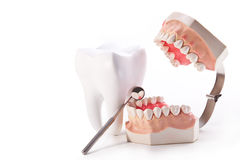 归因于牙医 免版税库存图片