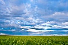 归档的云彩平衡 库存图片
