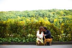 当一只红色猫倾斜对他们时,夫妇亲吻坐房客 免版税库存照片
