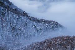 当不确定时去山并且享受惊人的风景 免版税库存照片