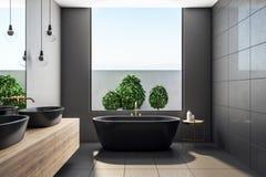 当代卫生间内部与植物 向量例证