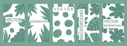 当代热带叶子邀请和卡片模板设计 向量例证