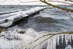 当冰冷的水在湖时的顺风边的植被捣毁冰柱被形成 库存照片
