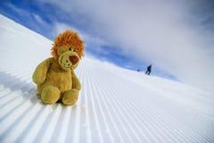 当利奥去滑雪 库存图片