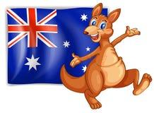 当前澳大利亚的旗子的袋鼠 库存图片
