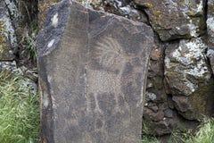 当地印地安羚羊动物刻在岩石上的文字 免版税图库摄影