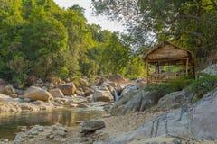 当地房子在越南的密林 库存图片