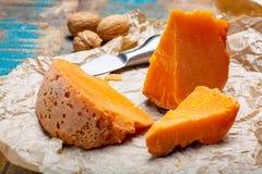 当地法国年迈的乳酪Mimolette片断,生产在有特别乳酪小蜘蛛做的灰色curst的里尔 库存照片