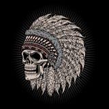 当地美洲印第安人首要头骨 库存图片