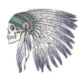 当地美洲印第安人首要头骨 免版税库存图片
