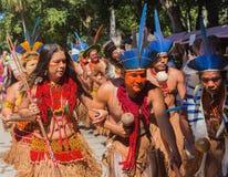 当地巴西印地安人仪式  免版税库存照片