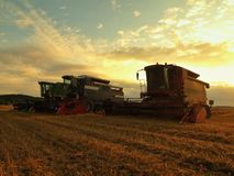 当太阳垂悬低在天际,组合收获麦子在农田中间 免版税库存图片