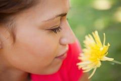 当她嗅到一朵黄色花,妇女闭上她的眼睛 库存照片