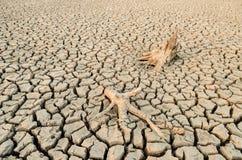 当我们的世界缺水 免版税库存图片