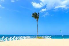 当沐浴时,在海滩的绿色旗子不表明危险 多米尼加共和国 免版税库存照片